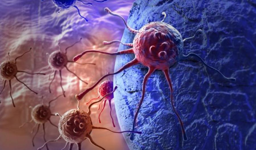 Hackerare le cellule e riprogrammarle per curare i tumori? Possibile